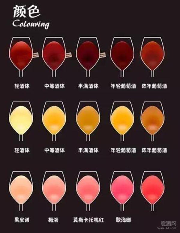 喝葡萄酒的杯子_学葡萄酒知识,从这10张图开始 - 葡萄酒知识 - 意酒网-红酒 ...
